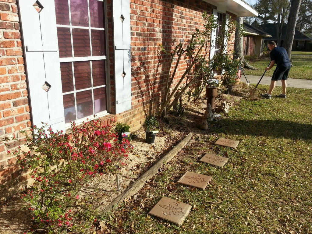 front garden removing plants